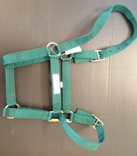 Halter Headstall web full