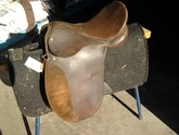 Pony Club Saddle