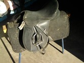 Wintec 2000 Pony Club Saddle